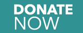 Donate Now teal